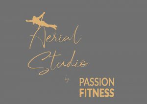 Aerial Studio by Passion Fitness